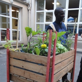 Le p'tit Follo - potager ambulant
