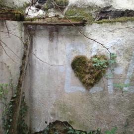 Coeur de mousse